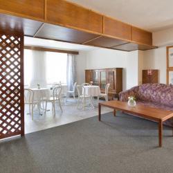 Hotel U bílého lva